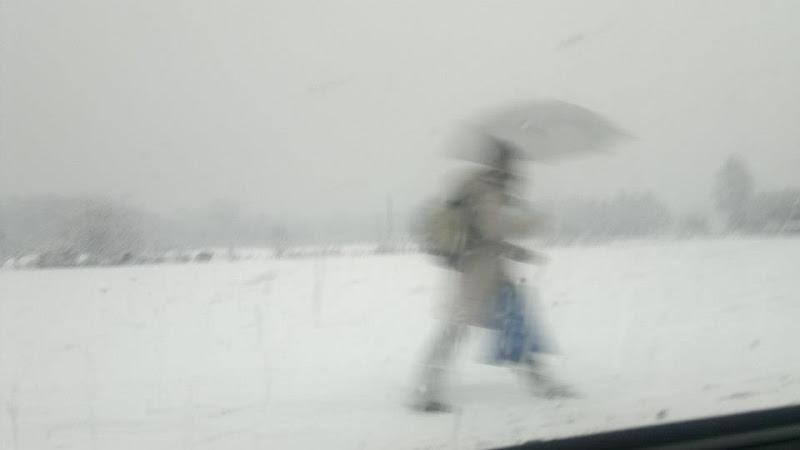 neve in pianura di Tiz