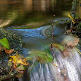 Waterfall detail by Chris Duffy - Nature Up Close Water ( fall, leaves, waterfall, autumn leaves, water, colours )