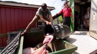 Custom Meat Processor