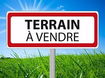 terrain à Sainte-genevieve-des-bois (91)
