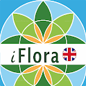 iFlora - Flora of Great Britain and Europe icon