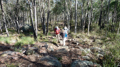 Photo: Climbing the last few metres. Phew!