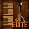 Professional Mandolin Elite icon