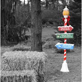 by Lorraine D.  Heaney - Public Holidays Christmas