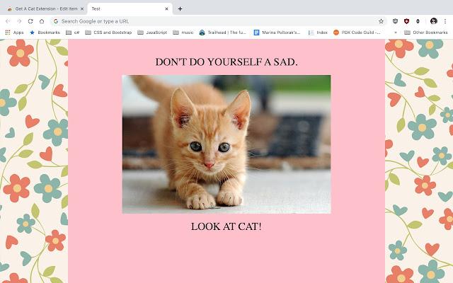 Get A Cat Extension