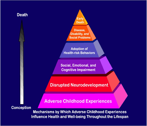 My take on childhood abuse's impact on the mind and body