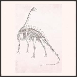 ブロントサウルスの骨格標本