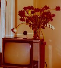 Photo: Turistin televisio