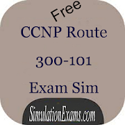 CCNP Route 300-101 ExSim-Free