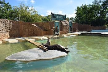 Lisbon Zoo