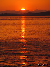 Photo: (Year 2) Day 334 - The Sunsetting Over Vancouver Island #2