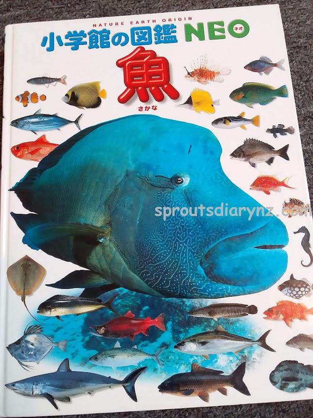 魚図鑑の表紙