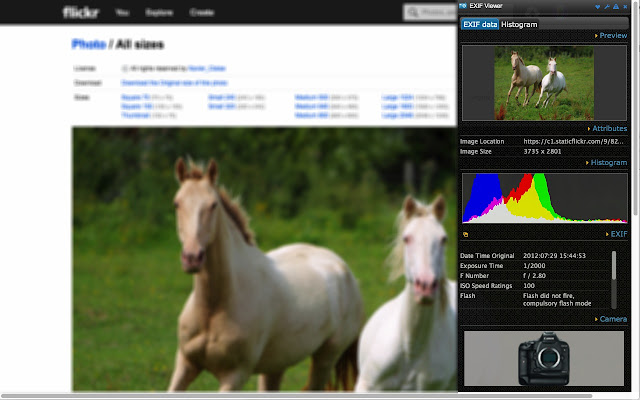EXIF Viewer chrome extension