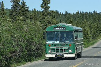 Photo: Denali National Park. Tourbus