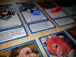 "Photo: Lesedose ""Korallenriff"" > Endlich Pause"