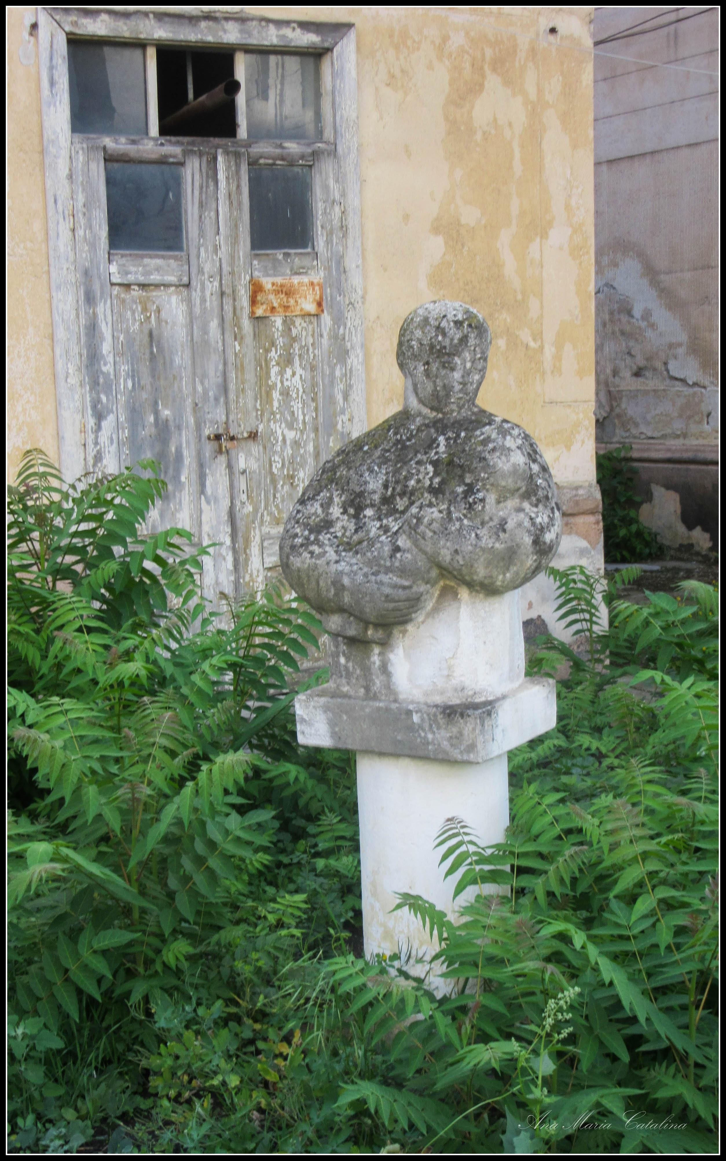 Photo: Str. Andrei Muresanu in curte - zona fostei cladiri,  sectie ginecologie - 2017.06.09