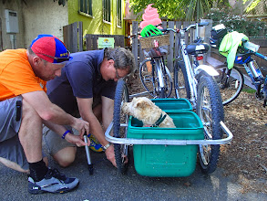 Photo: tyre repair to dog trailer