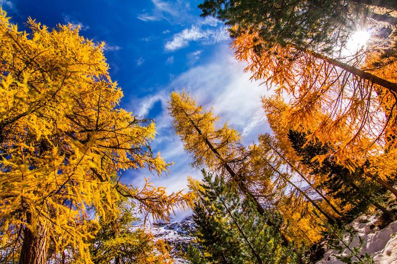 Swiss autumn di fedevphoto