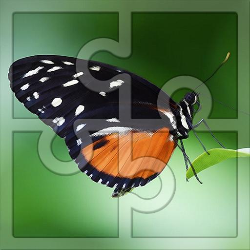 Best Free Puzzle for Kids: Butterflies Jigsaw