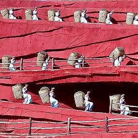 Naxi Dance by Xiufen Gu - People Musicians & Entertainers ( naxi, lijiang )