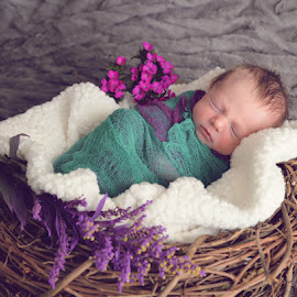 New Life by Kristi Fiske - Babies & Children Babies ( child, new life, basket, baby, flowers, newborn )