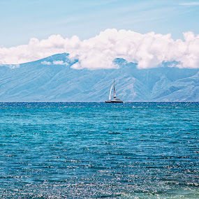 Sweet Sailing by Christie Lynn - Landscapes Waterscapes ( clouds, maui, mountain, nature, sailboat )