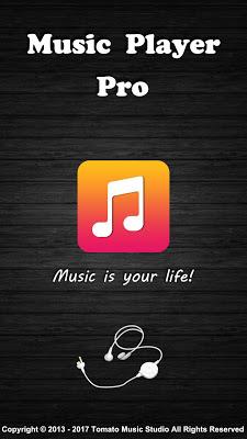Music Player Pro - screenshot