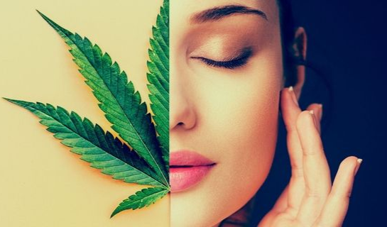 Study: Regular Cannabis Use Makes You Skinnier And Healthier