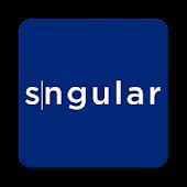 Sngular810