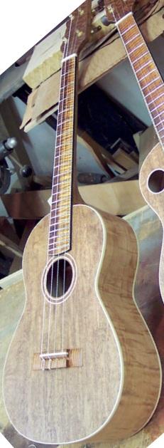 koll guitars tenor