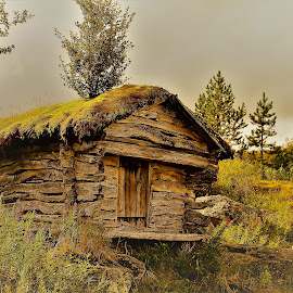old House  200 years by Roald Heirsaunet - Buildings & Architecture Architectural Detail