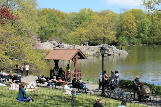 Photo: The Lake. Central Park. New York