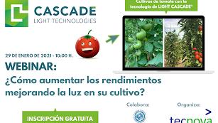 Un evento clave para saber cómo se puede mejorar la luz en los cultivos de  hortalizas y mejorar los rendimientos.