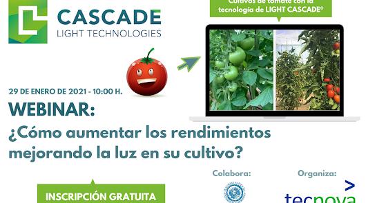 Mejora los rendimientos de tus cultivos de tomates