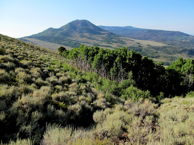 Looking down the trail toward Hen's Hole Peak