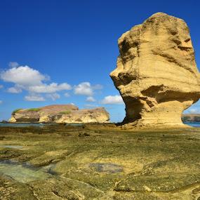Umbrella Stone-Lombok Island by Putu Ekak - Nature Up Close Rock & Stone