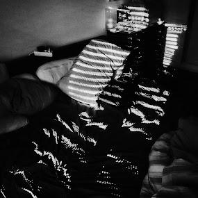 intruder by Paulo Rodrigues - Black & White Abstract ( interior, bairro azul, arquitectura, building, b&w, texture, art, textura, lisbon, capture one, architecture, shadows, city, urban, photo/foto, cidade, pattern, sombra, sonya6000, local, portugal, lisboa )