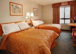 Comfort Inn Ithaca