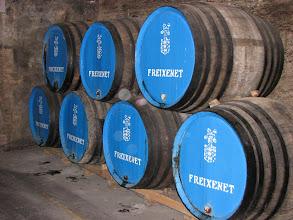 Photo: A few barrels in the cava (Spanish sparkling wine) cellars at Freixenet.