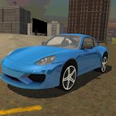 Incredible Race Car Simulator