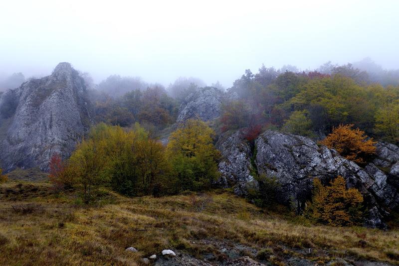 La nebbia agli irti colli di Ltz/rivadestra