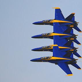 Blue Angels by Shixing Wen - Transportation Airplanes ( virginia beac, f-18 super hornet, virginia, nas oceana airshow, airshow, blue angels )