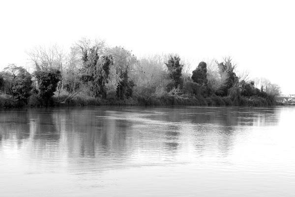 Ricordi sul fiume di @mbm
