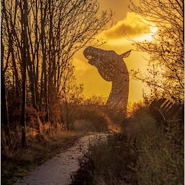 kelpies by Sandy Crowe - Landscapes Sunsets & Sunrises