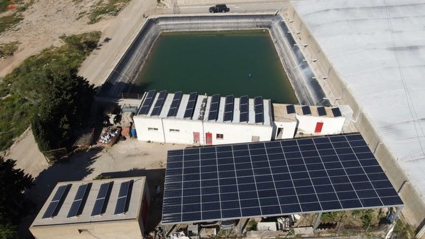 Instalación fotovoltaica realizada en una finca agrícola por Proconsult.