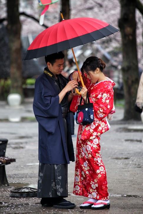 Kimona w parku Sumida, Tokio, Japonia