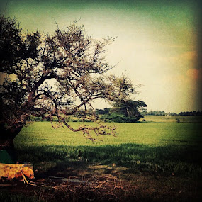 by Abul Faizy S M - Instagram & Mobile iPhone