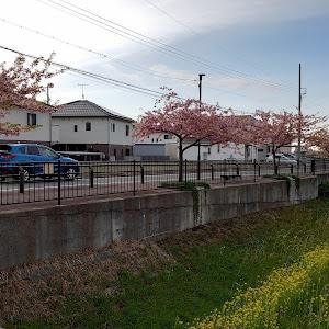 CX-5 KE2AW のカスタム事例画像 織田家のQ太郎さんの2020年03月08日18:46の投稿