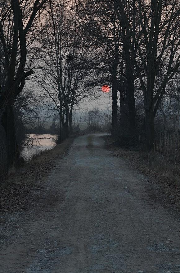 Sentiero.. di Wilmanna