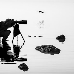 Concentrating by Stanley Loong - People Professional People ( waiting, concentrating, focus, birds, shooting, photographers, taking a photo, photographing, photographers taking a photo, snapping a shot,  )